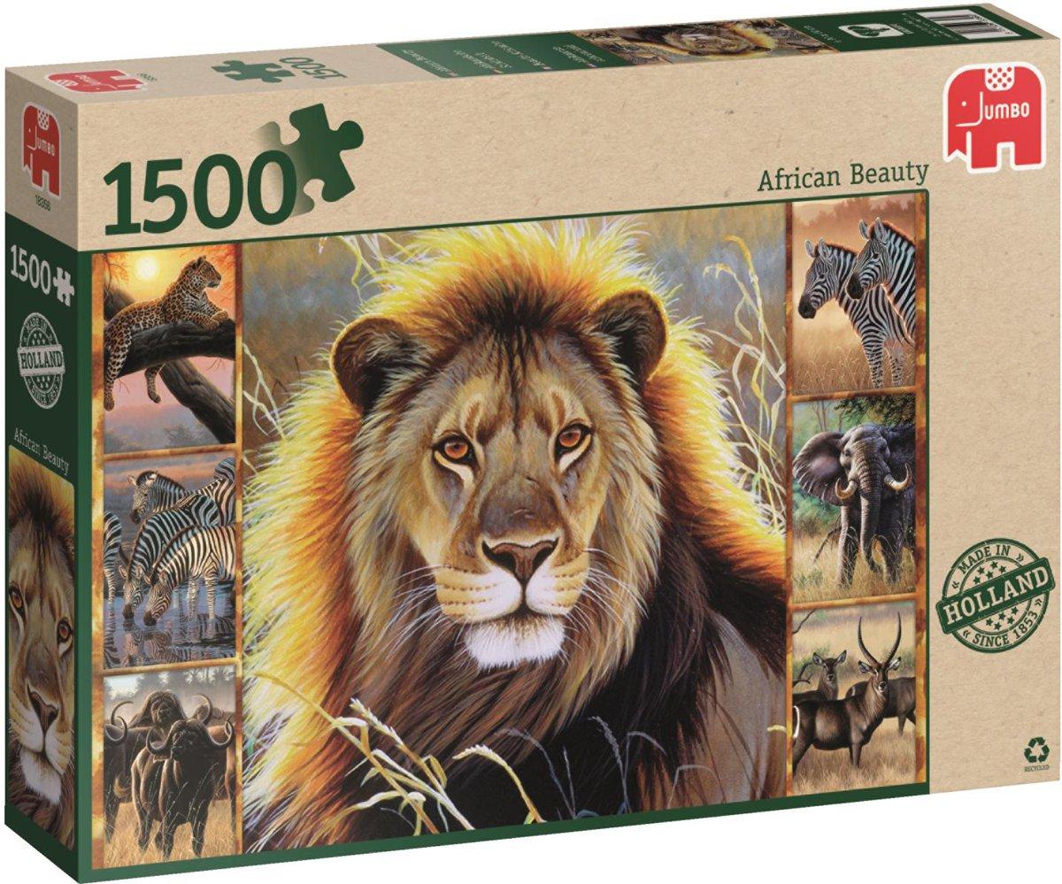 Afrikaanse schoonheid puzzel