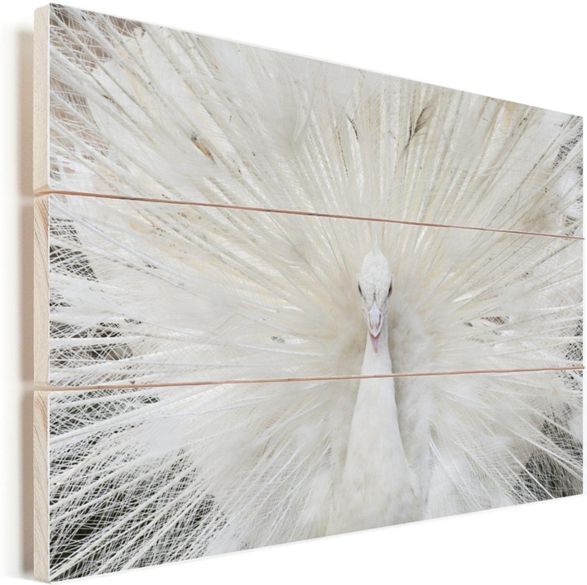 163fad21a70 https://www.bol.com/nl/p/blauwmaanzaad-in-houten-kom-plexiglas ...