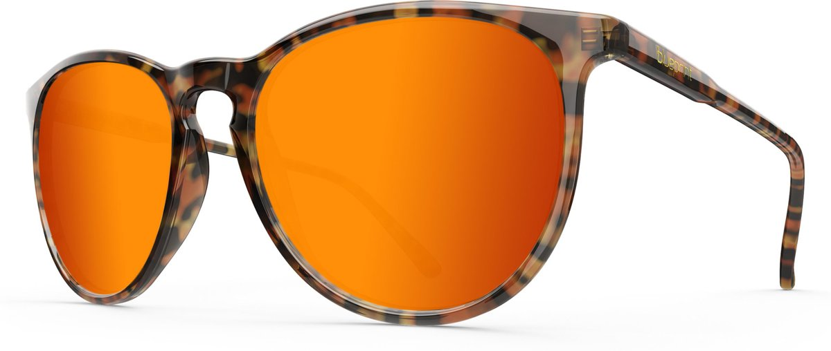 Blueprint Eyewear Elba // Orange Havana kopen