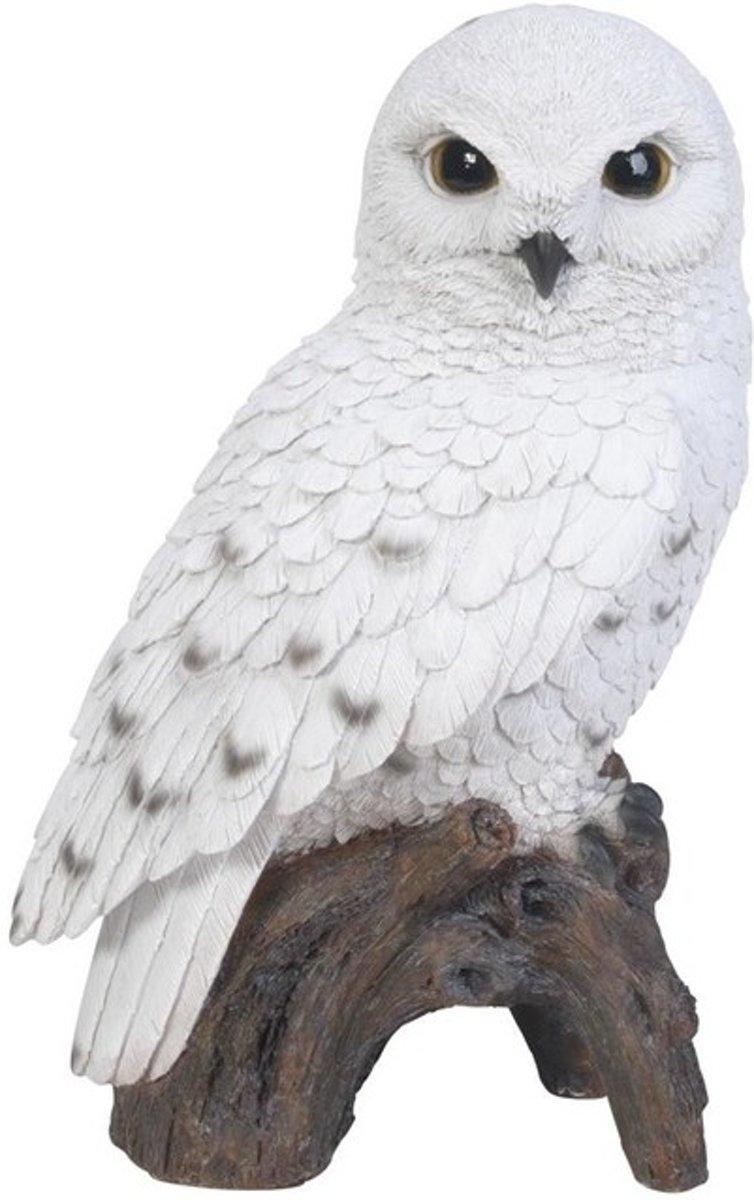 Sneeuwuil op stam - levensecht - set van 2 stuks