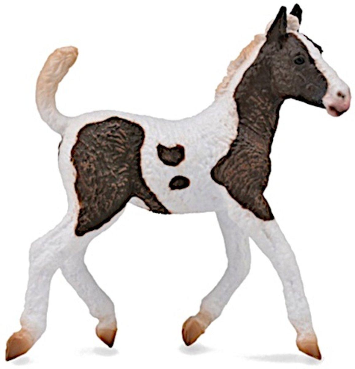 Collecta Paarden: Curly Veulen 9 X 9 Cm kopen