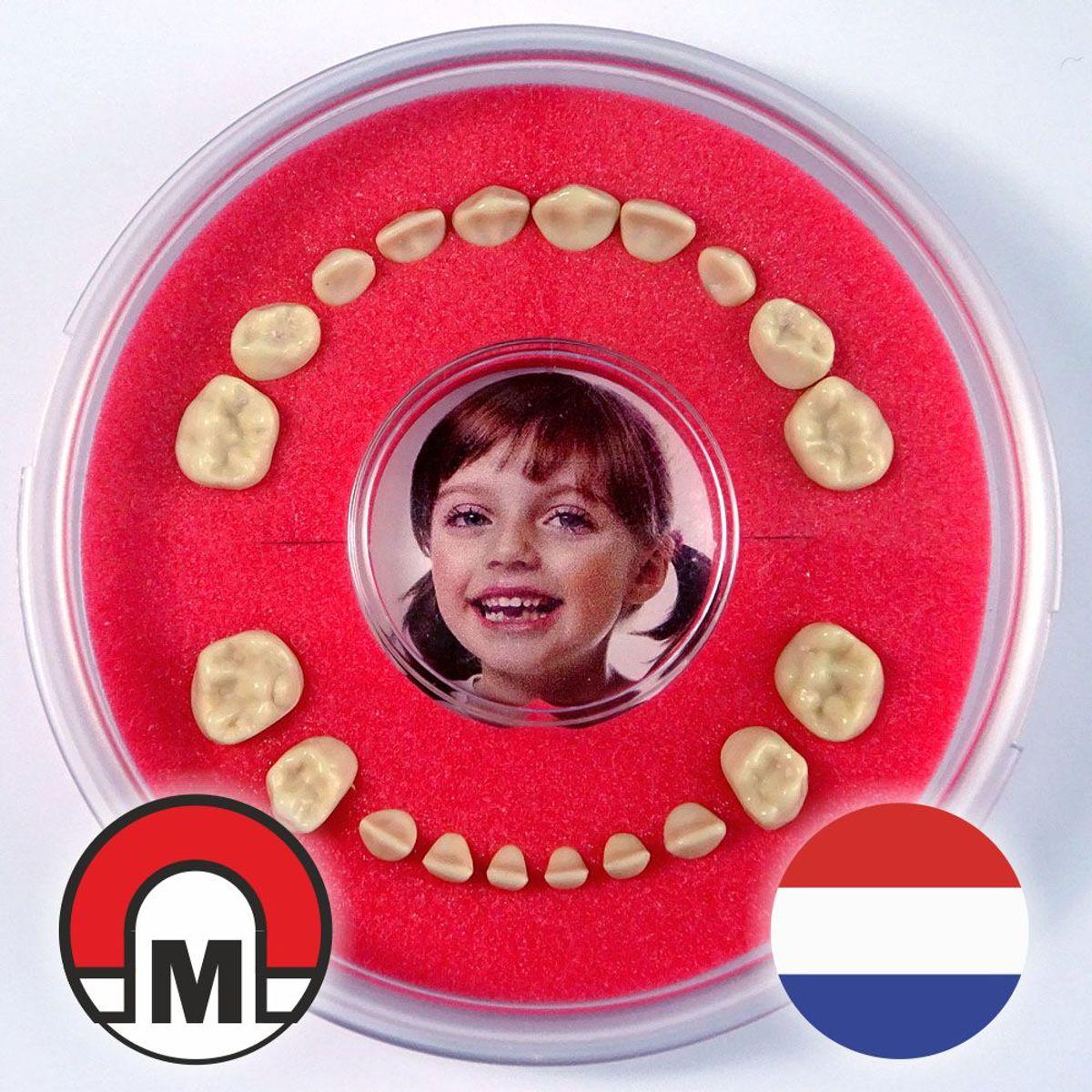 Tandendoosje / Koelkastmagneet Firsty® Round Magnetic (Jongen/Meisje, Rood) -- Bekijk Video kopen