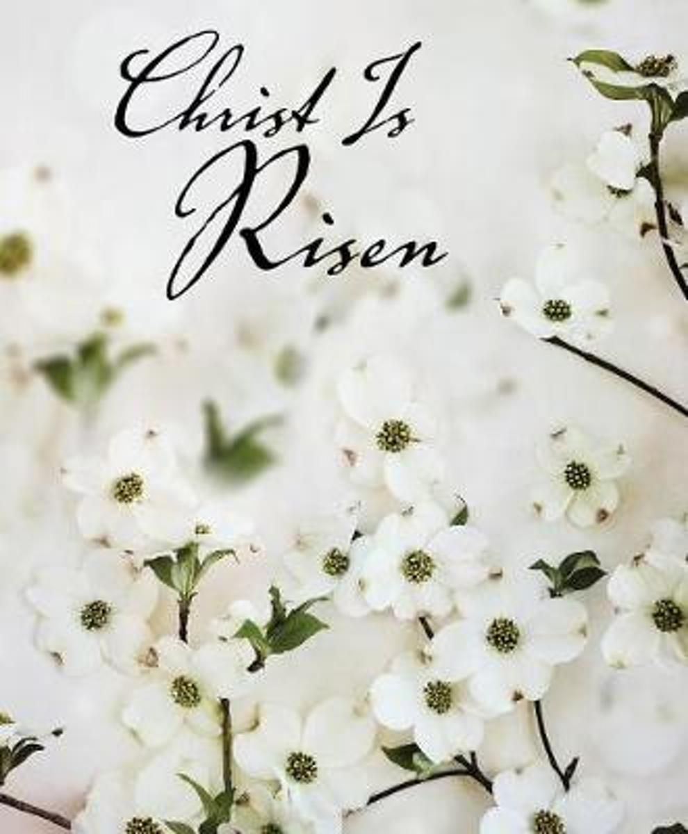 Christ Is Risen Dogwood Easter Bulletin, Large (Pkg of 50) kopen