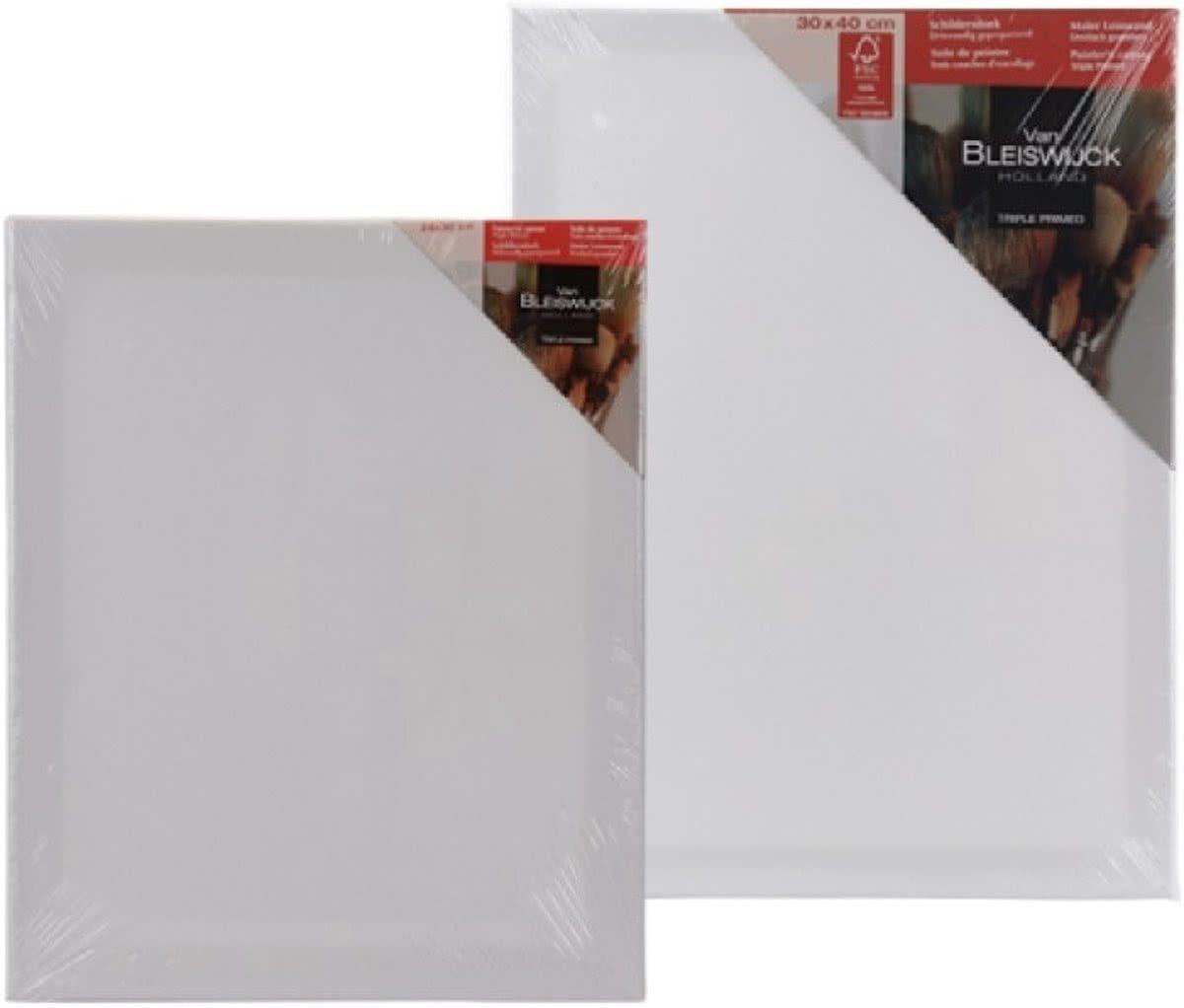 Schilderdoek canvas 20x20cm van Bleiswijck Holland - 2 stuks - Schildercanvas - 20x20cm - schilder doek - drievoudig geprepareerd kopen