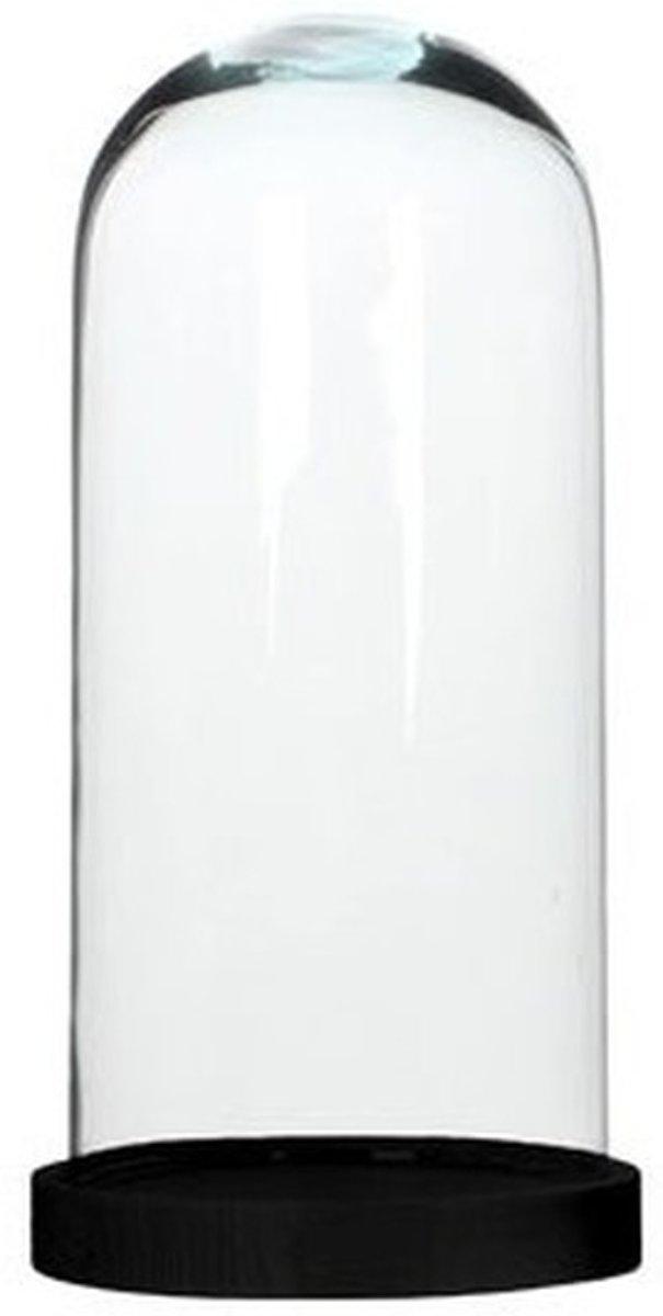 Glazen decoratie stolp Hella op zwarte houten plateau 13 x 26 cm - Home Deco stolpen - Woonaccessoires kopen