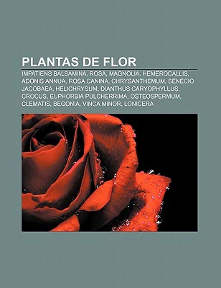 Bolcom Plantas De Flor Source Wikipedia 9781231432075 Boeken