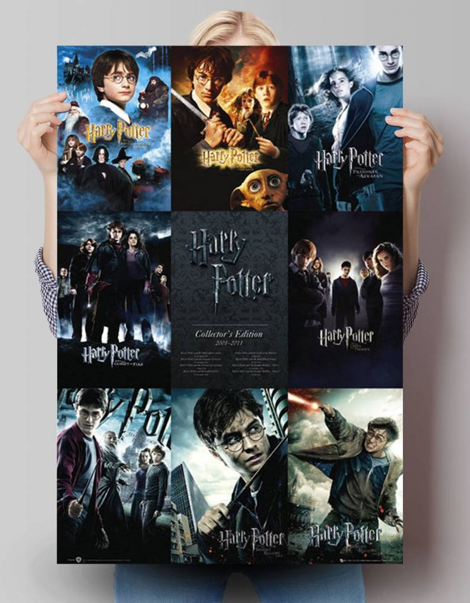 Reinders Poster Harry Potter - collection - Poster - 61 × 91,5 cm - no. 22615 kopen
