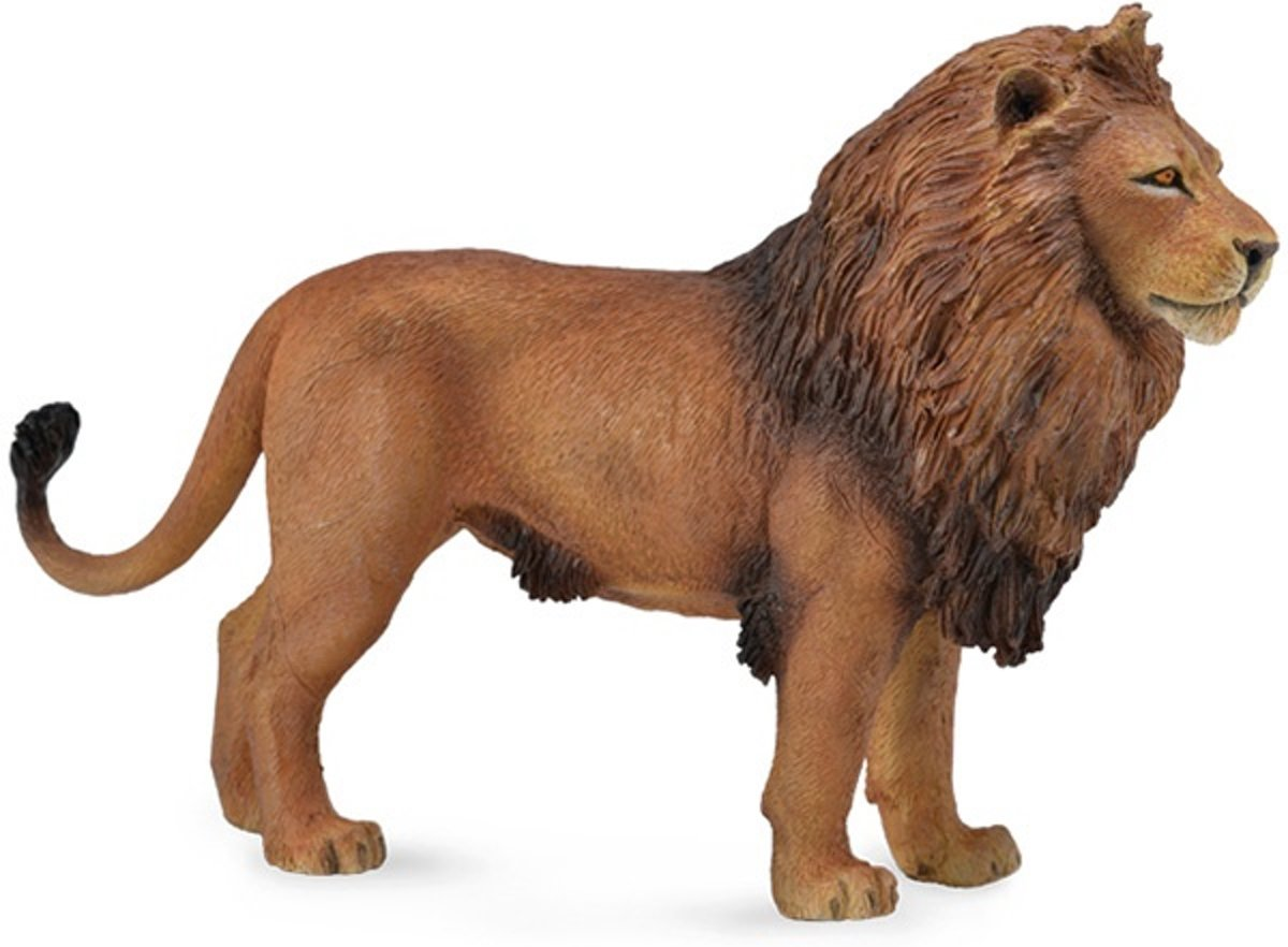 Collecta Wilde Dieren: Afrikaanse Leeuw 14 X 9 Cm kopen