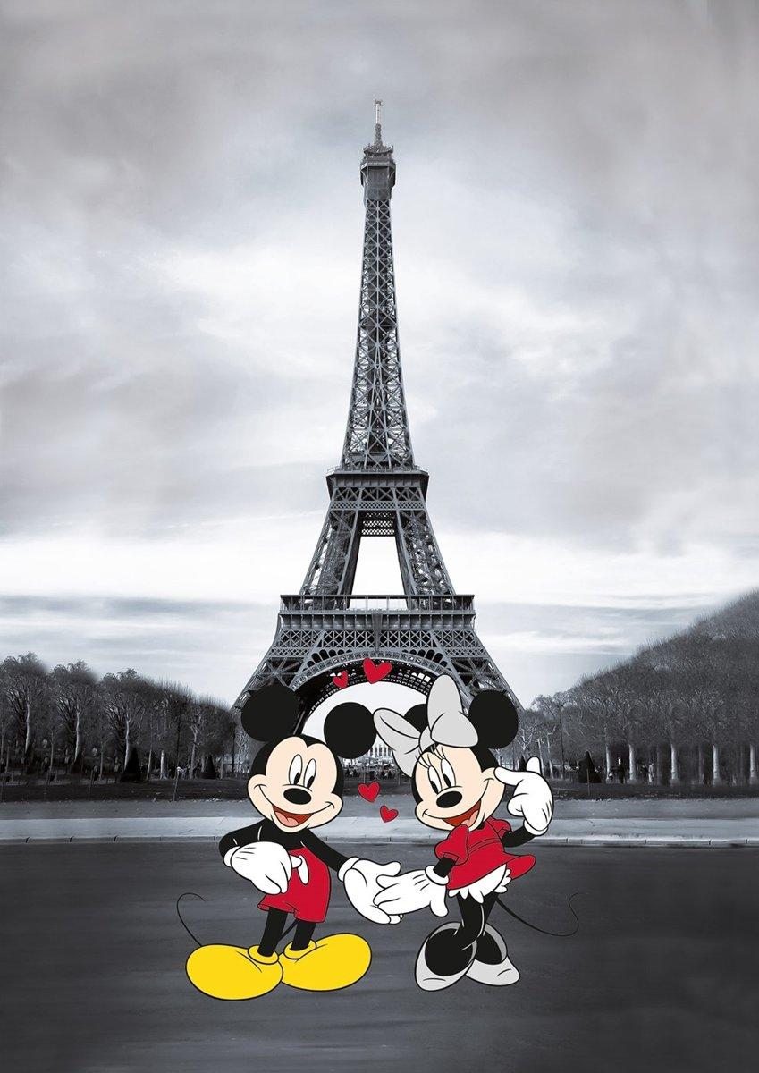 Canvas Mickey & Minnie in Parijs kopen