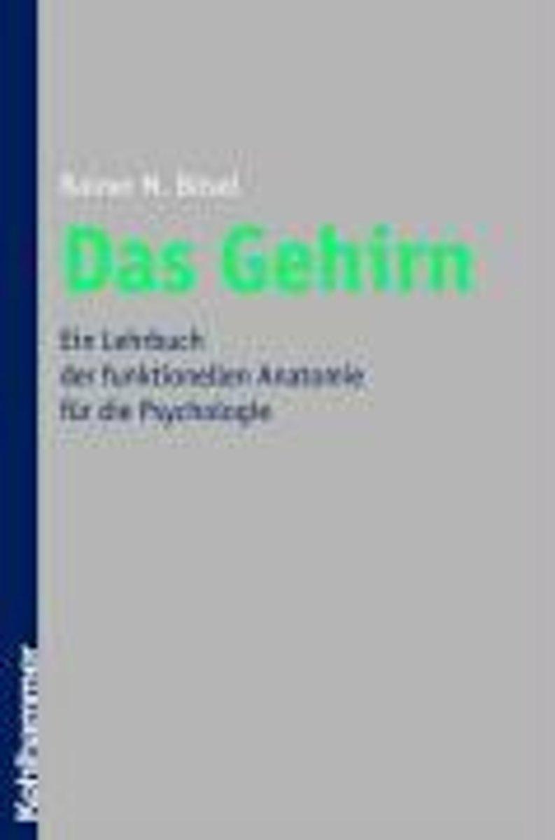 bol.com | Das Gehirn, Rainer Bösel | 9783170191839 | Boeken