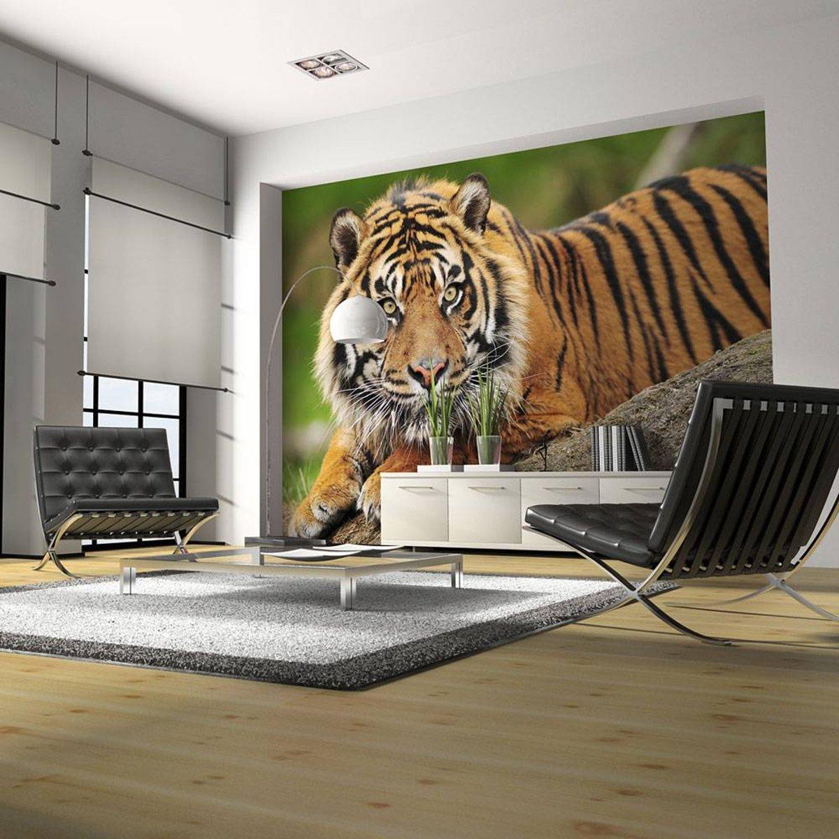 Fotobehang - Sumatraanse tijger , beige bruin kopen