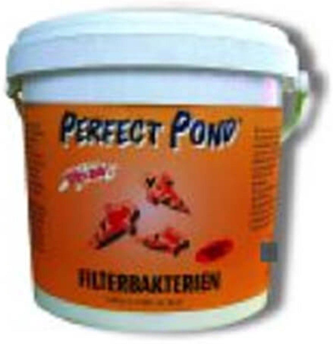 Filterbacteriën 2500 gr kopen