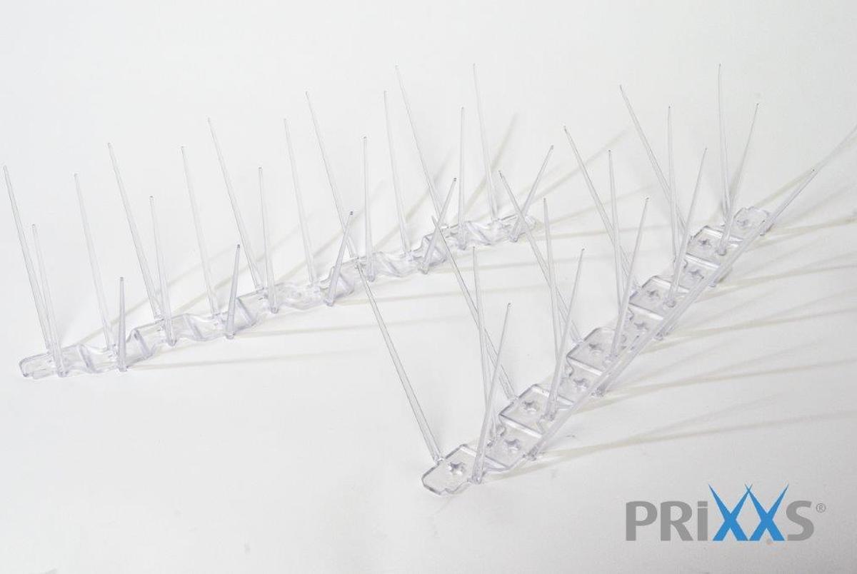 PRIXXS VOGELWERING DUIVENPINNEN (5 METER) kopen