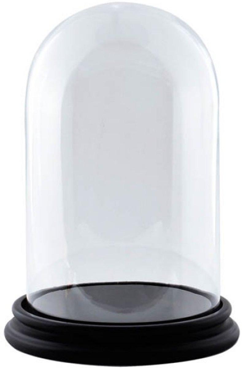 Glazen stolp met zwart houten voet H 25 cm x D 17 cm kopen