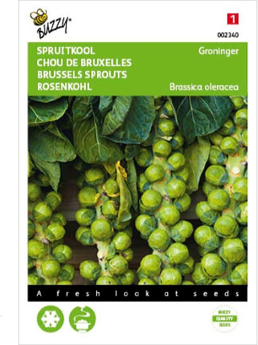 Buzzy® Spruitkool Groninger kopen