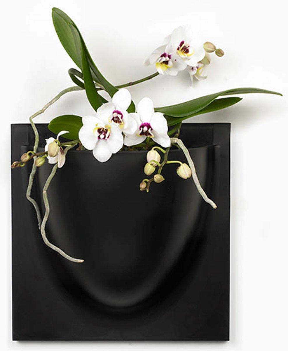 Verti Copenhagen wandpot VertiPlants Mini | zwart 15 x 15 cm kopen