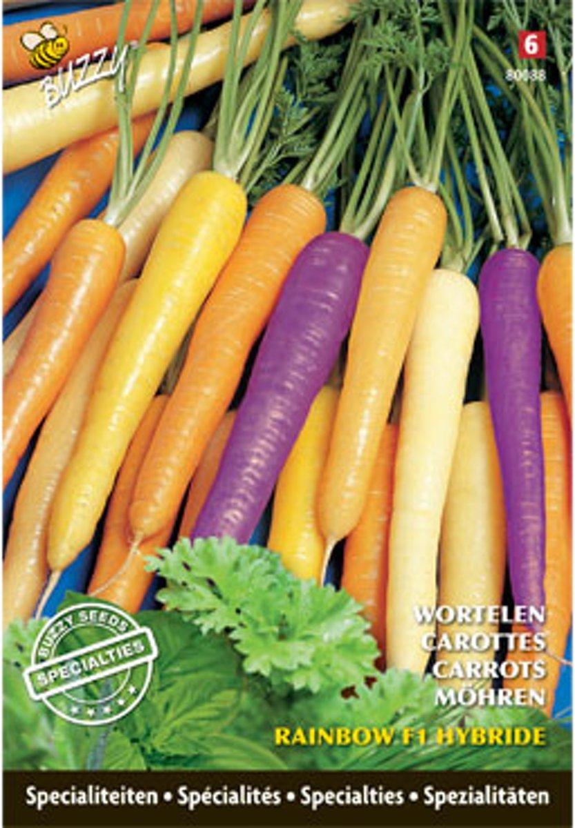 Buzzy® Specialties Zomerwortel Rainbow F1 kopen