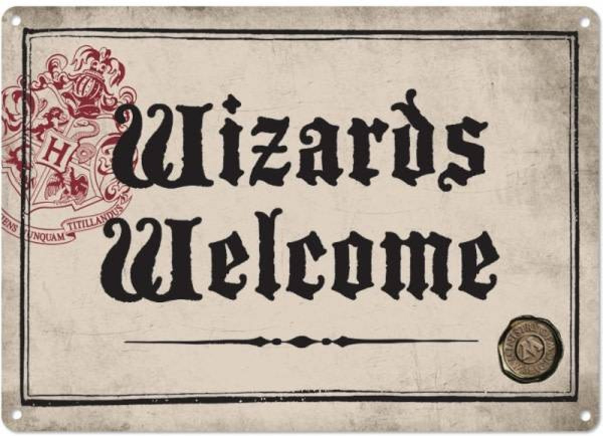 Harry Potter Small Tin Sign - Wizards Welcome kopen
