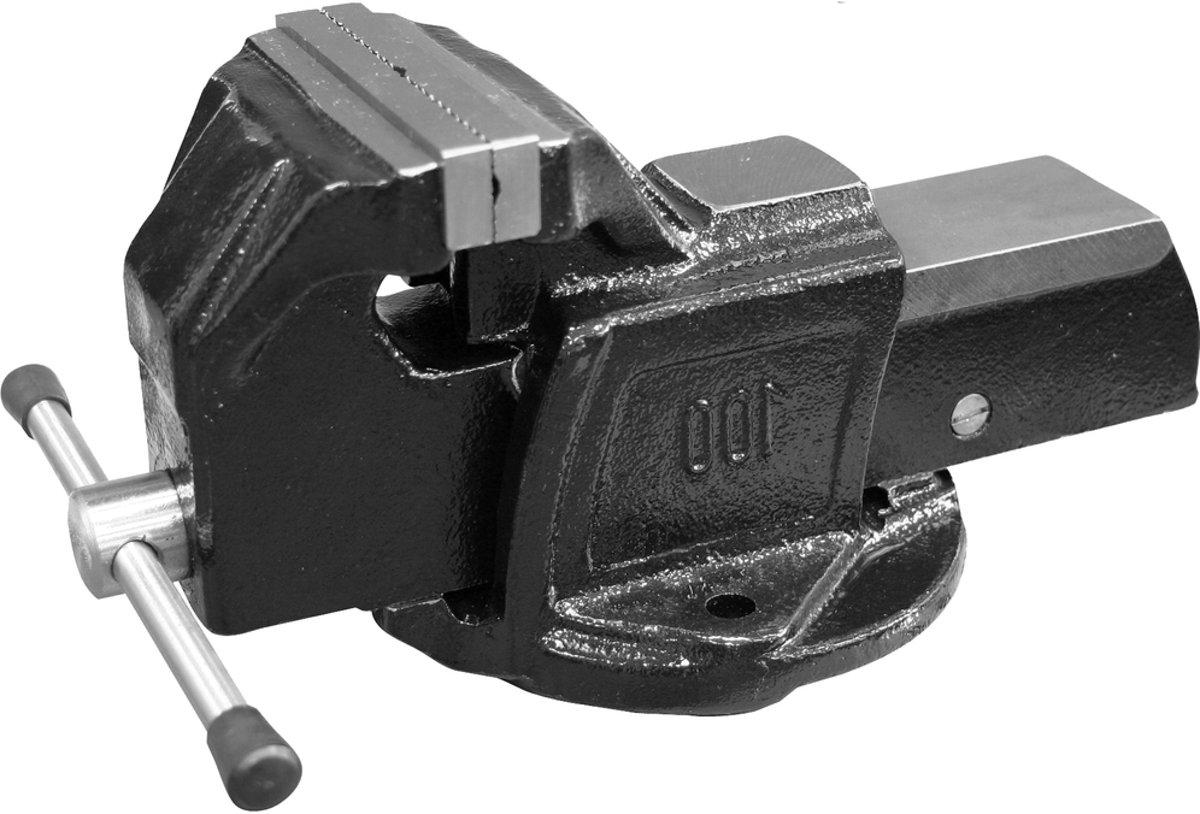 Skandia Bankschroef - 100 mm kopen