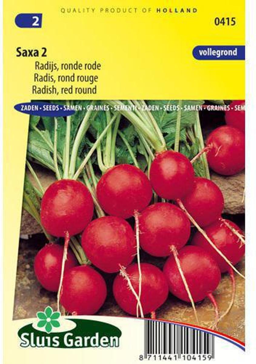 Sluis Garden - Radijs Saxa 2 kopen