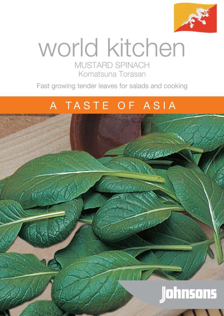 World Kitchen - Mustard Spinach Komatsuna Torasan F1 kopen