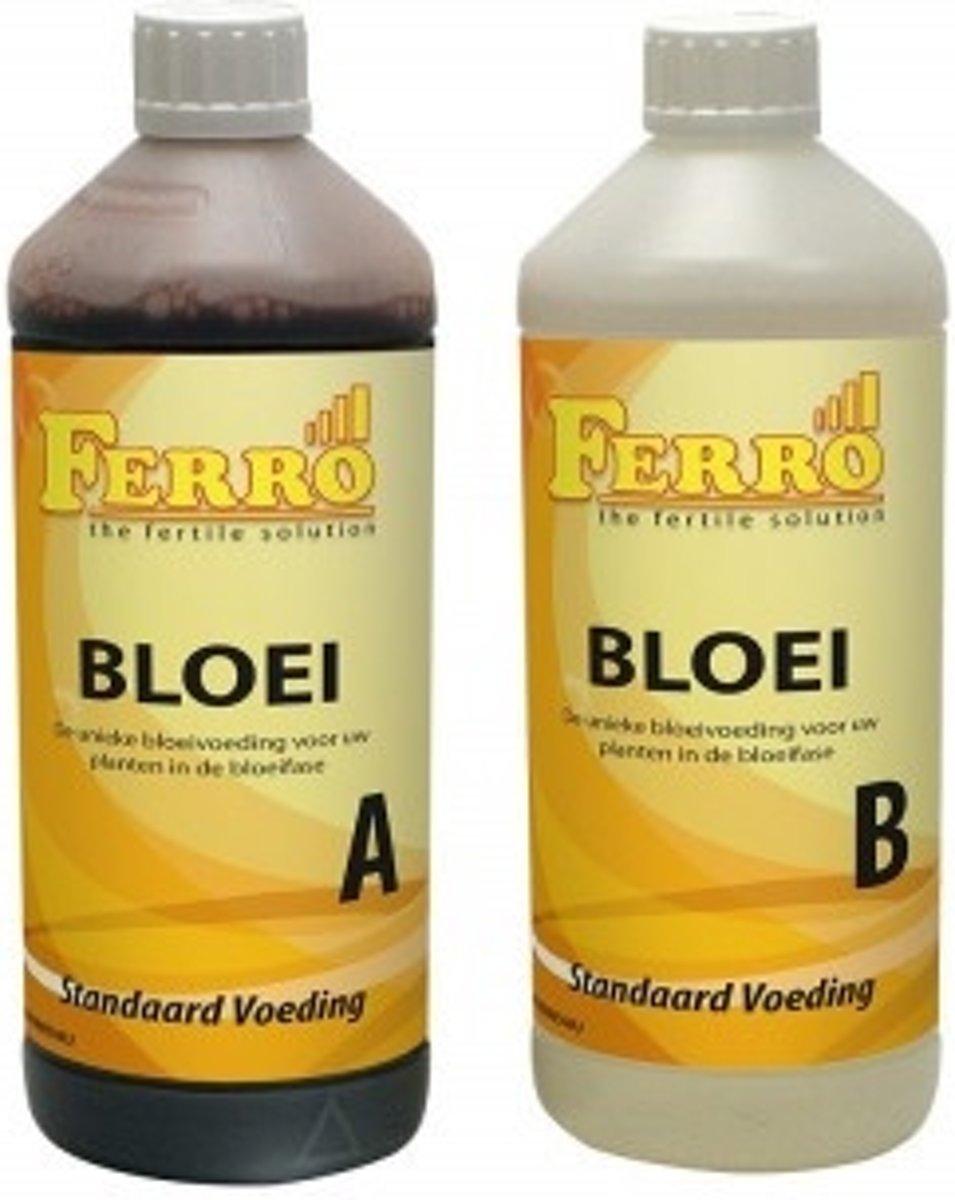 Ferro Standaard Bloei A&B 1 ltr kopen