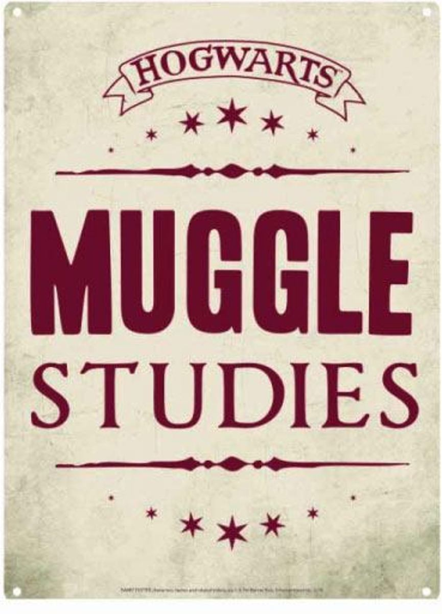 Harry Potter Muggle Studies Tin Sign Poster kopen