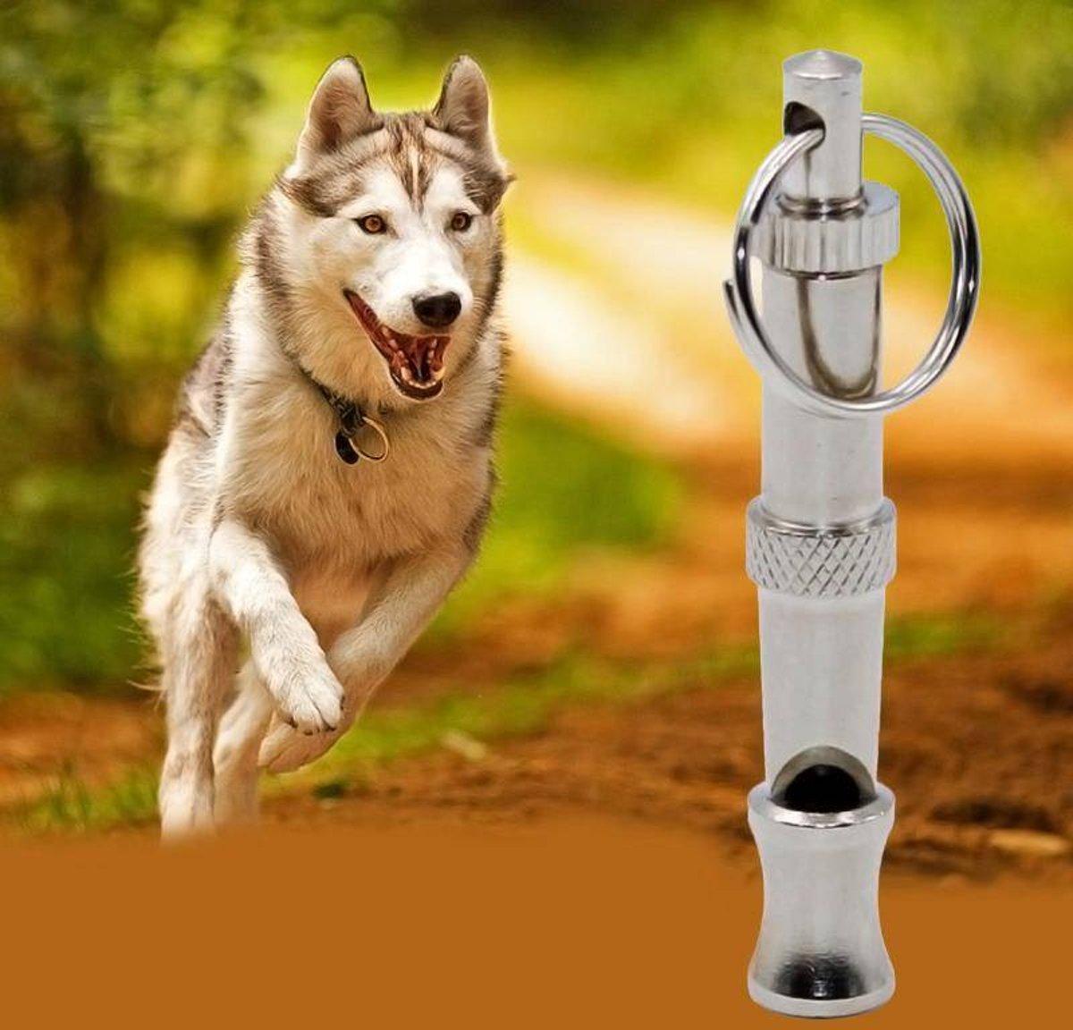 Hoogfrequentie Hondenfluitje kopen