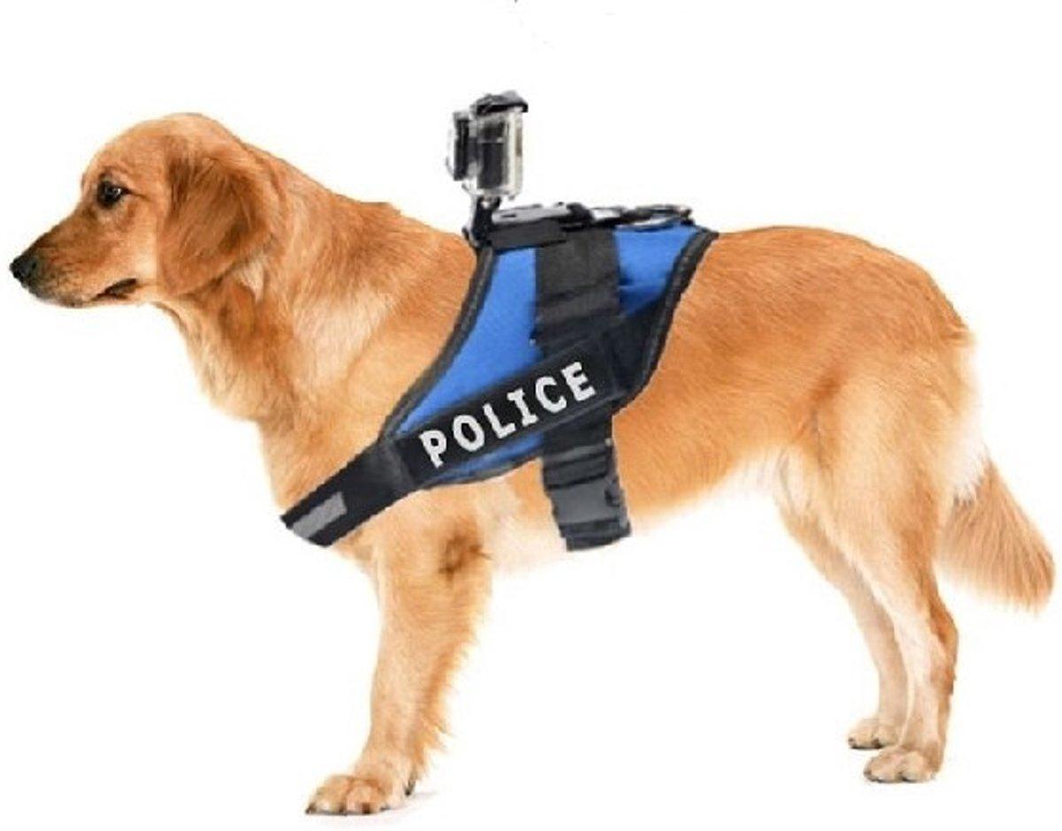 Fetch Hondenharnas / Houder / Riem voor GoPro kopen