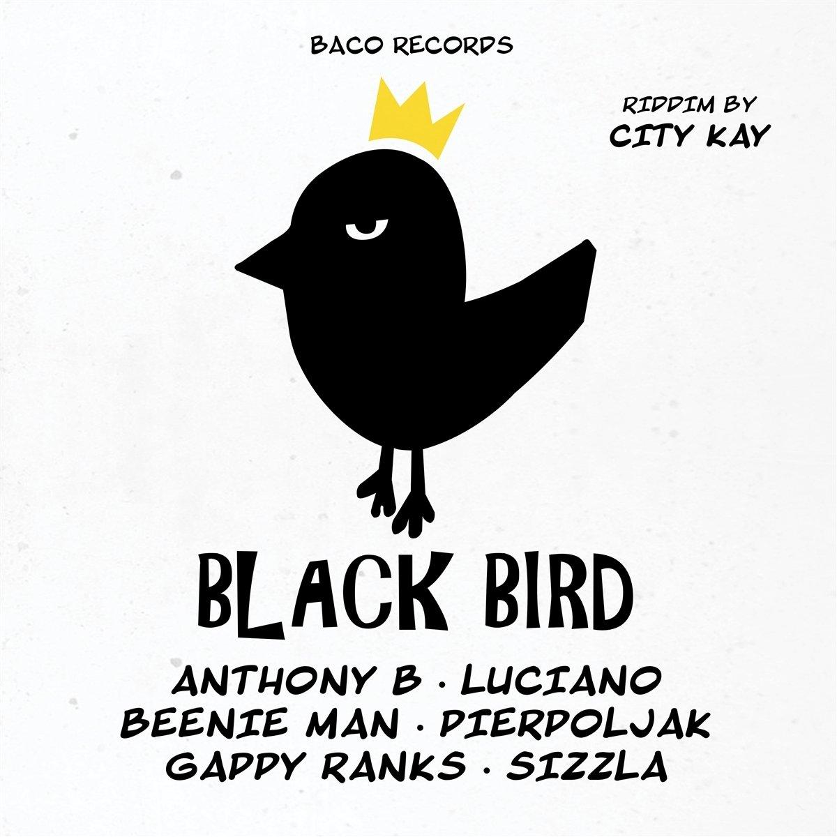 Black Bird Riddim By City Kay kopen