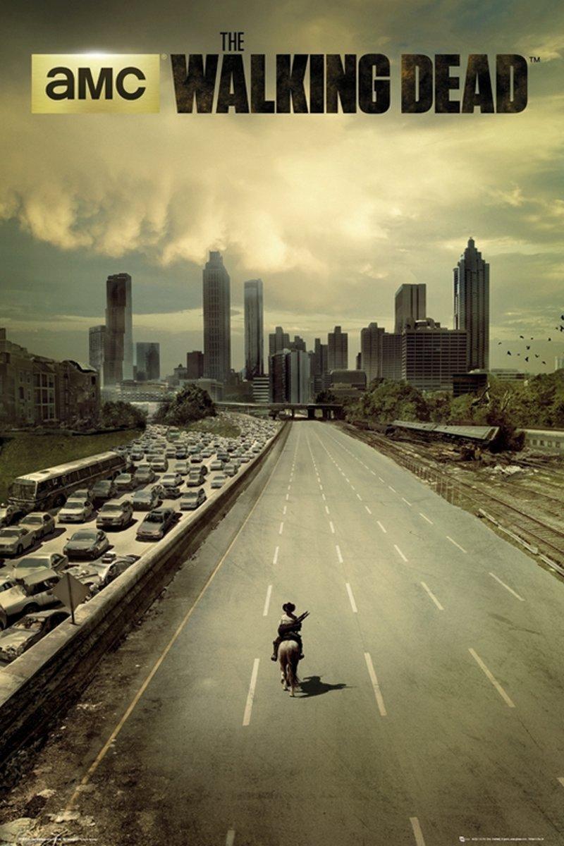 The Walking Dead -tv serie-Zombies-Poster-61x91.5cm. kopen