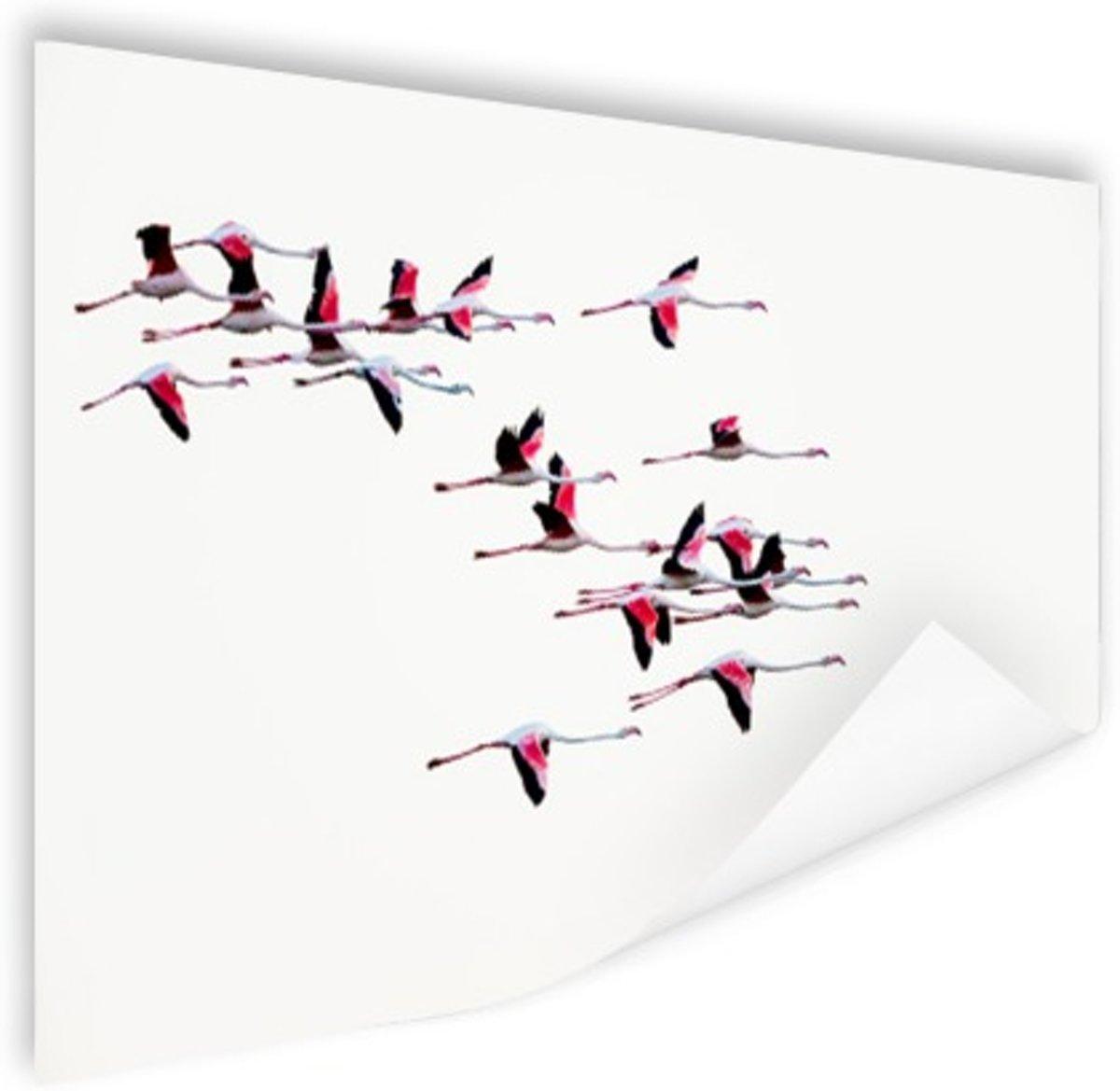 Vliegende flamingos Poster 180x120 cm - Foto print op Poster (wanddecoratie) / Dieren Poster XXL / Groot formaat! kopen