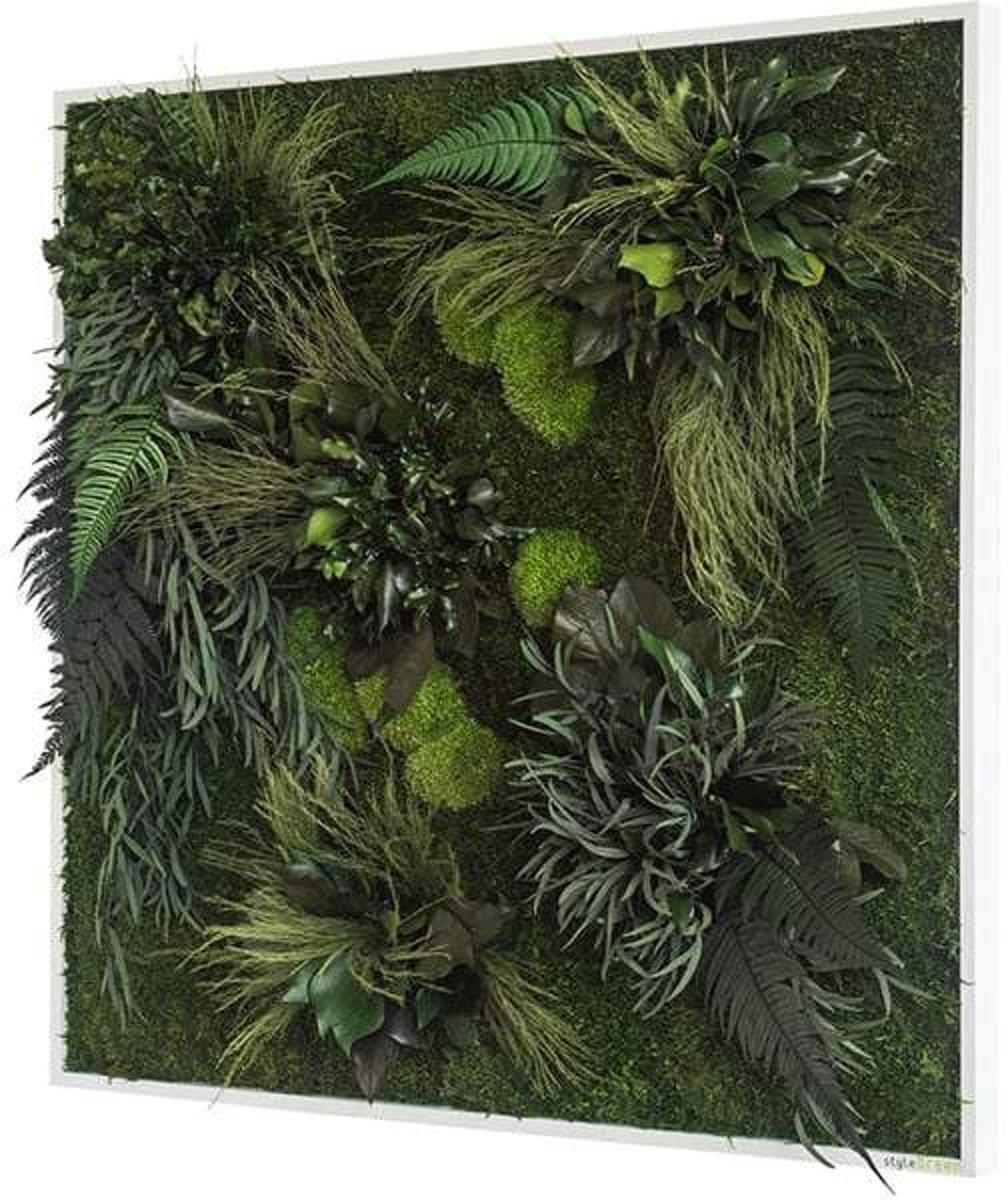 Verticale tuin - Plant islands - 80 x 80cm