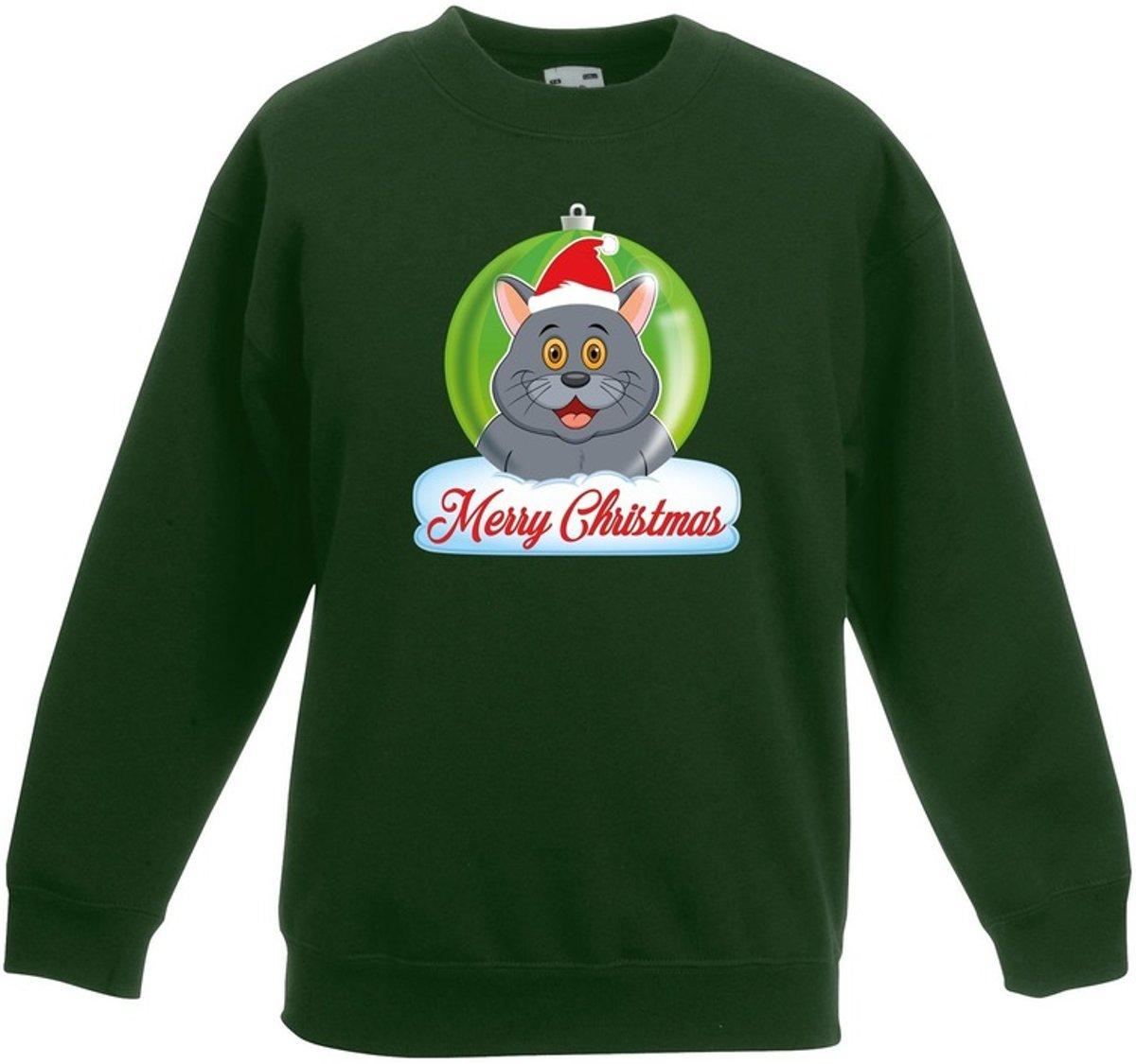Kersttrui Merry Christmas grijze kat / poes kerstbal groen jongens en meisjes - Kerstruien kind 14-15 jaar (170/176) kopen