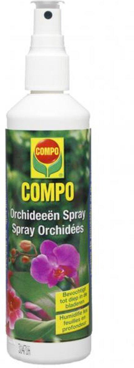 Orchideeën spray - set van 3 stuks