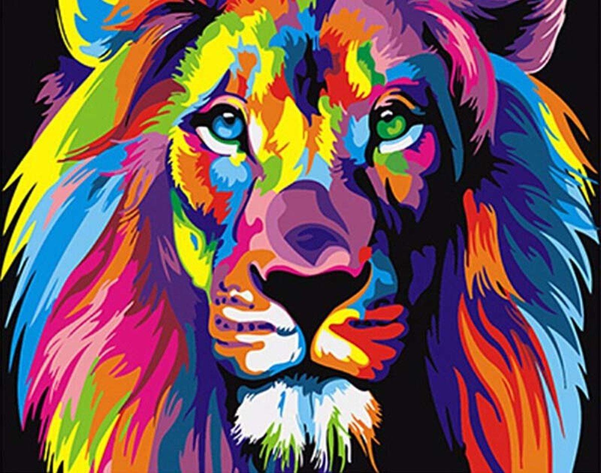 Schilderen op nummer - Gekleurde Leeuw - 40 x 50 centimeter kopen