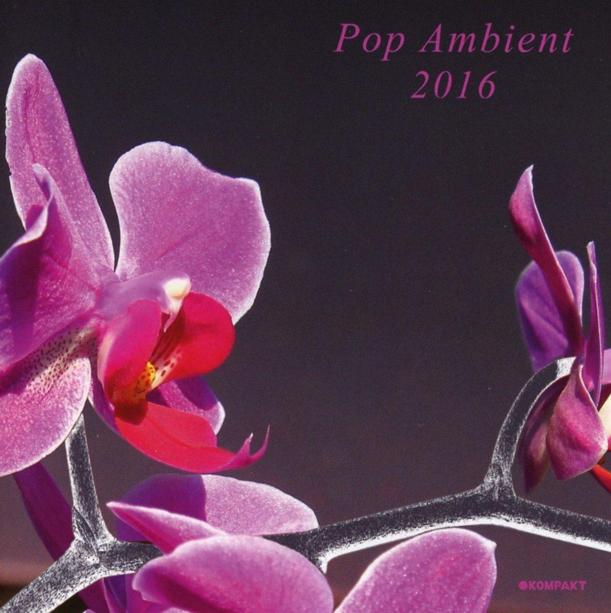 Pop Ambient 2016 kopen