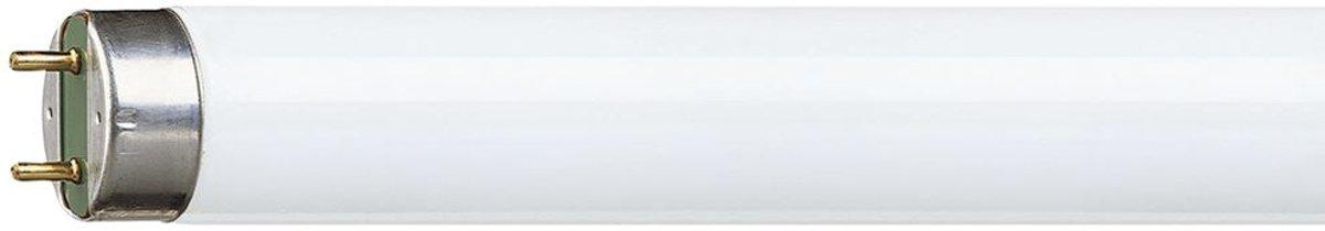 Osram Active Daywhite 36W G13 A fluorescente lamp kopen