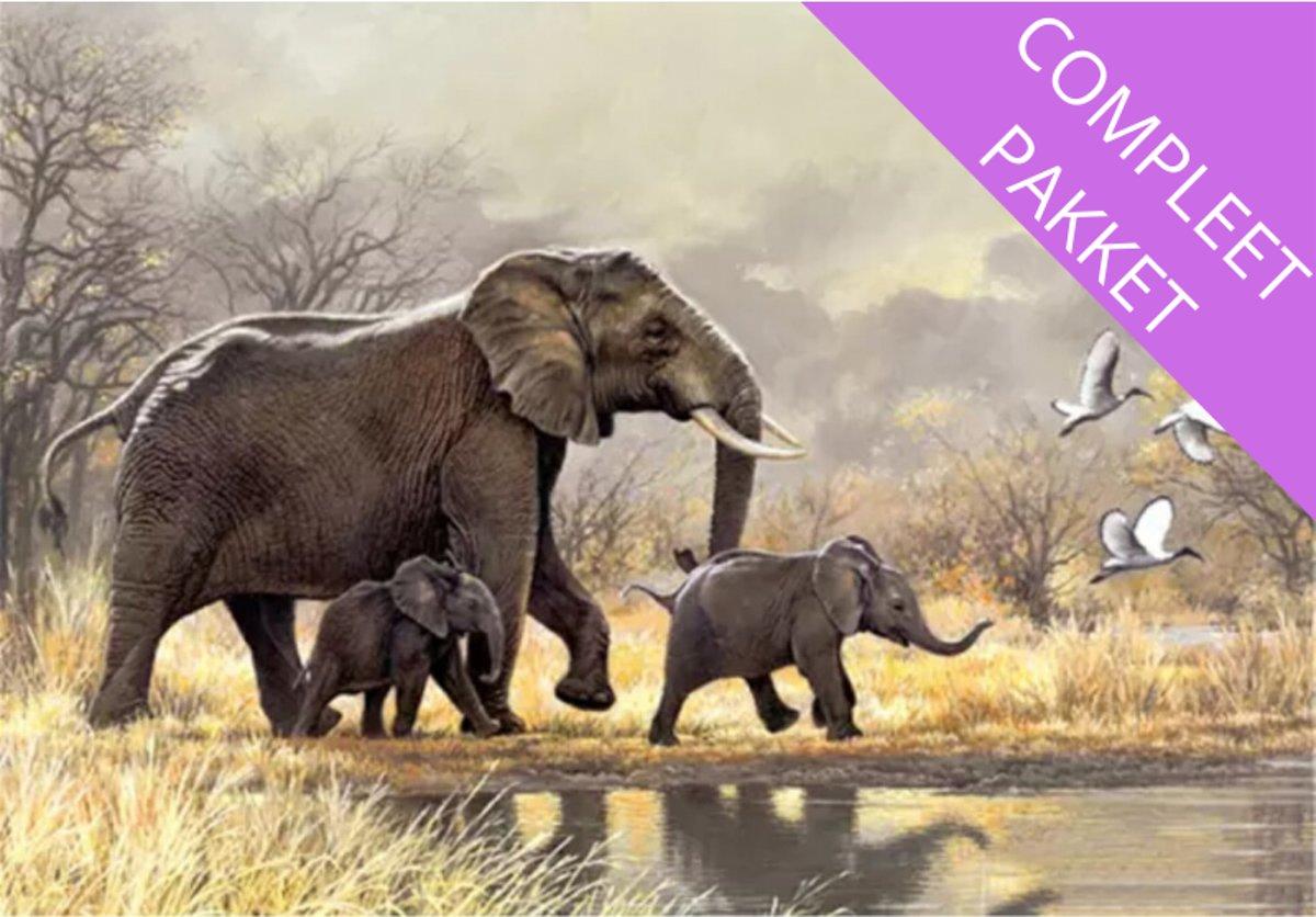 Afbeelding van product LACOM  Diamond Painting Olifanten - Pakket voor Volwassen en Kinderen - Volledige Diamont Painting inclusief Assecoires