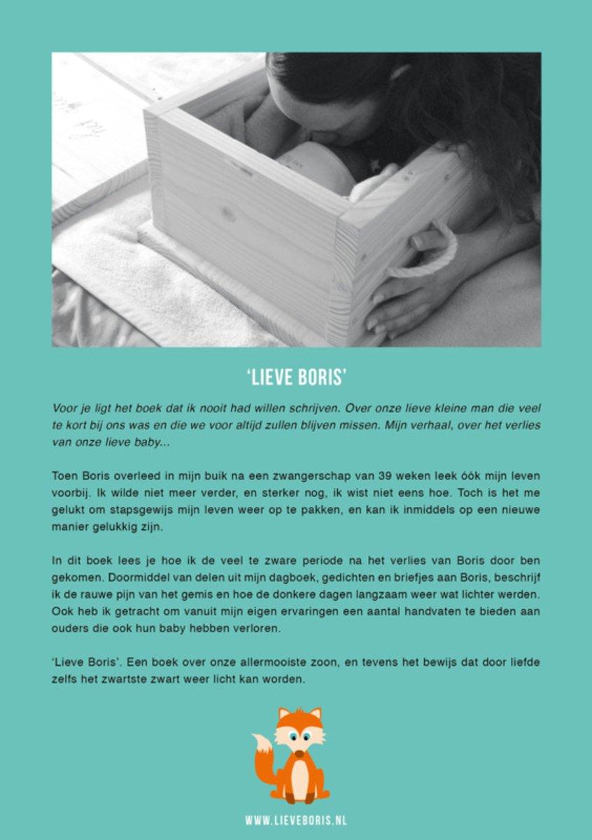 Uitzonderlijk bol.com | Lieve Boris, Anja Dalhuisen | 9789082689501 | Boeken #BG06