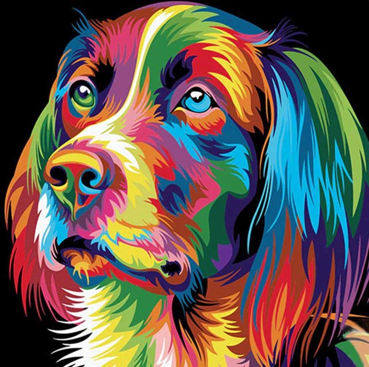 Schilderen op nummer - Gekleurde hond - 40 x 50 centimeter kopen
