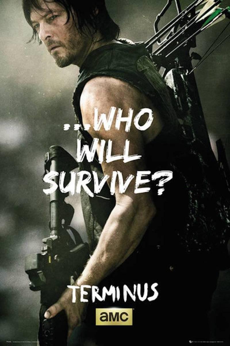 WALKING DEAD - Poster 61X91 - Daryl Survive kopen
