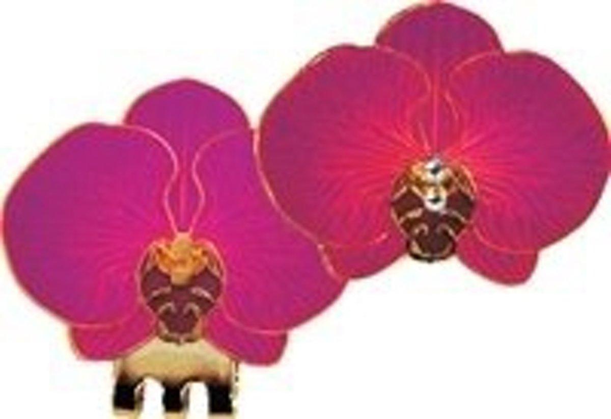 Magnetische Golfbal Marker Orchidee - paars kopen