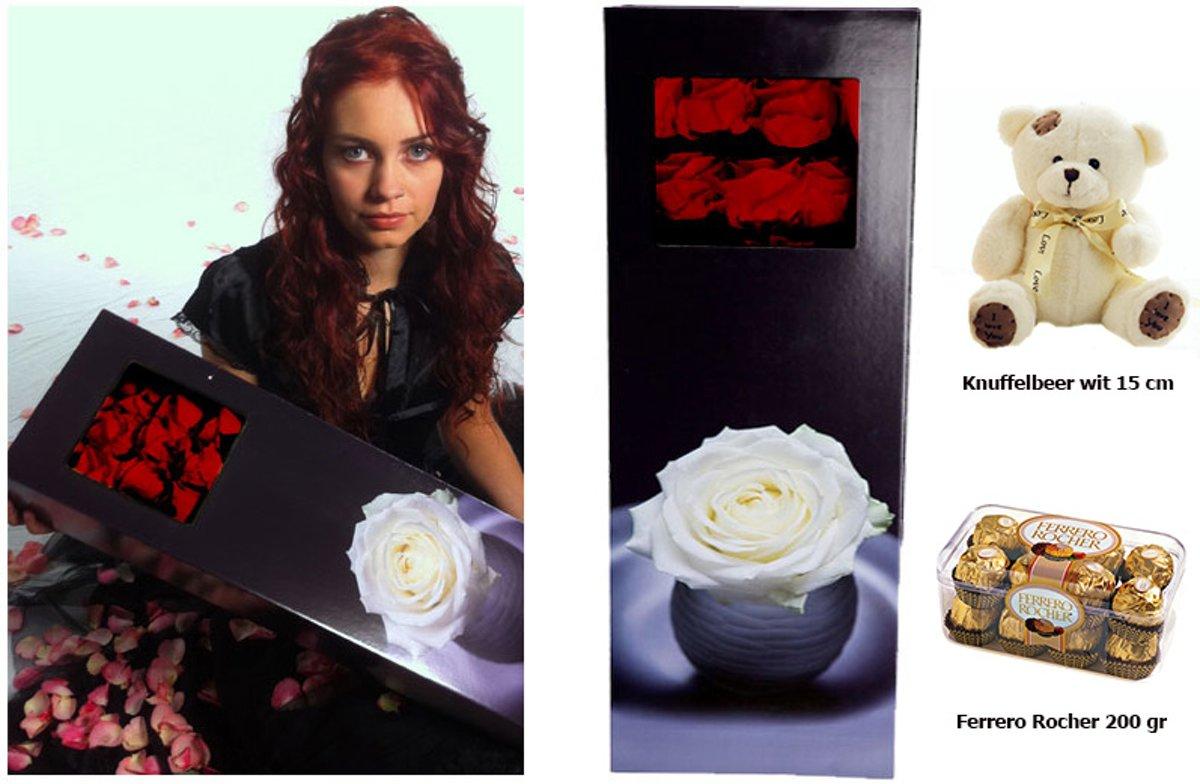 10 rode grootbloemige rozen + ferrero + knuffelbeer wit (18 cm) kopen