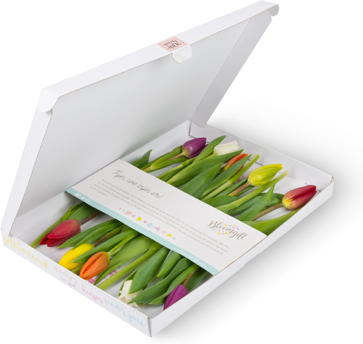 Brievenbusbloemen gemengde tulpen kopen