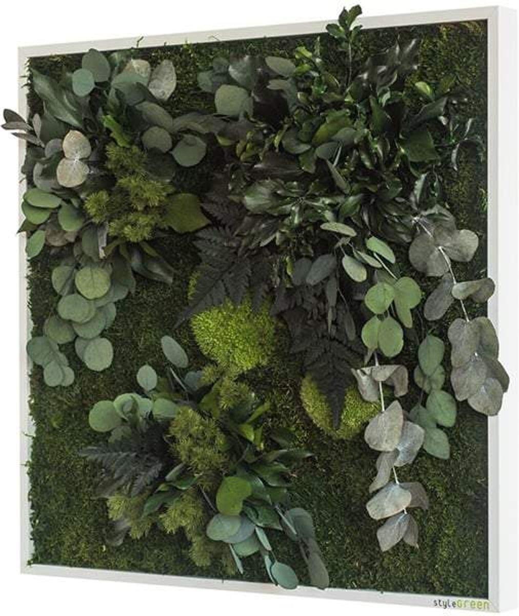 Verticale tuin - Plant islands - 55 x 55cm