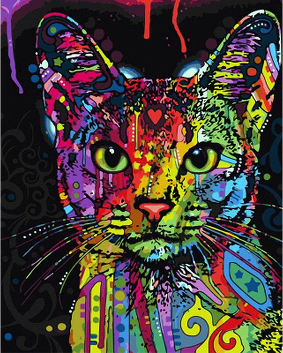 Schilderen op nummer - Gekleurde kat poes - 40 x 50 centimeter kopen