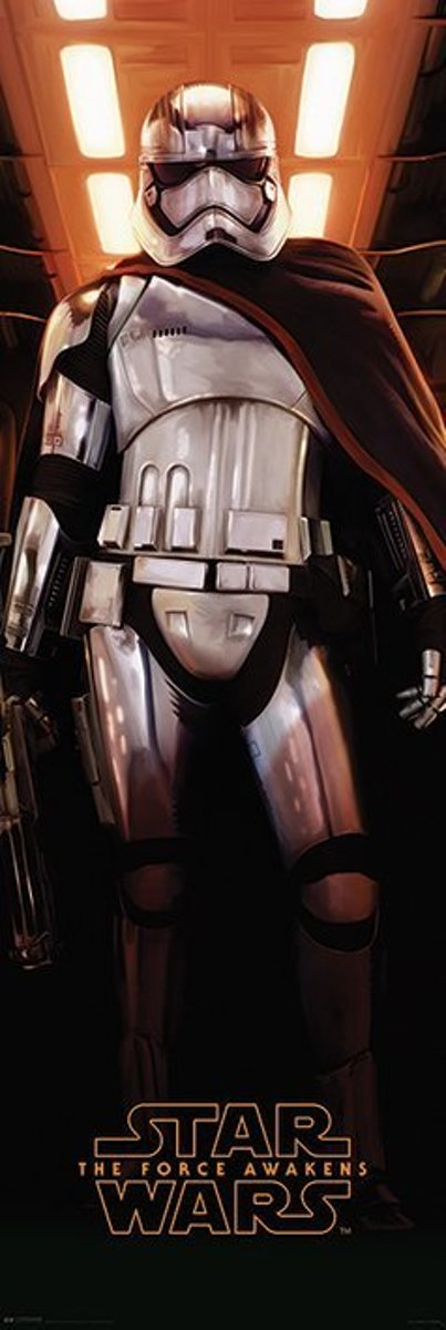 STAR WARS EPISODE VII CAPTAIN PHASMA Door Posters kopen