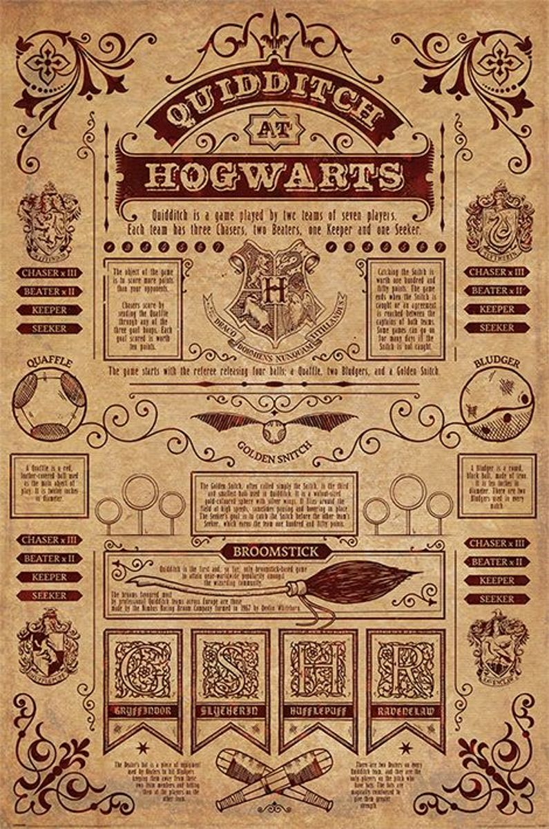 Harry Potter Quidditch At Hogwarts Maxi Poster kopen