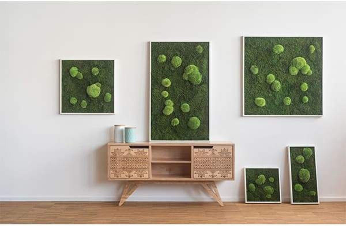 Verticale tuin - Flat & Pole moss - 80 x 80cm